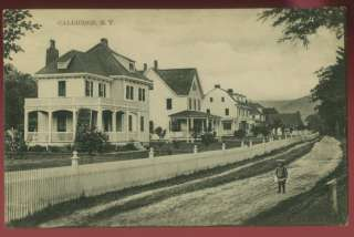 060911 LOVELY HOMES DIRT ROAD CALLICOON NY POSTCARD 1908