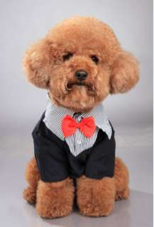 Dog Clothes Western Style Mens Suit & Bow Tie Puppy Costume Apparel