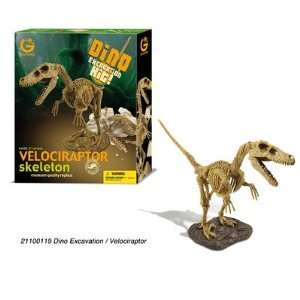 Geoworld Dino Excavation Kit   Velociraptor Skeleton Toys & Games