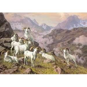 Harry Curieux Adamson   Arctic Citadel Dall Sheep: Home & Kitchen