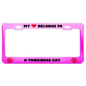 A Tonkinese Cat Pet Pink Metal License Plate Frame Tag