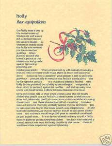 Book of Shadows Page about Holly and Mistletoe