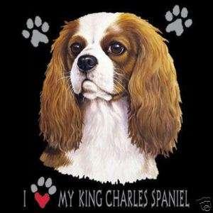 Cavalier King Charles Love Long Sleeve T Shirt