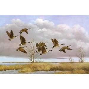 Maynard Reece   Nine Travelers Canada Geese Home