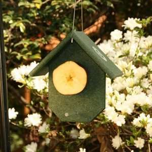 Friendly Recycled Plastic Fruit Oriole Feeder Patio, Lawn & Garden