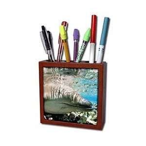 Mili, Marshall Islands (N. Pacific)   Tile Pen Holders 5 inch tile pen
