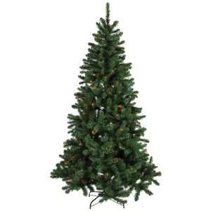 Good Tidings 96781 Slim Balsam Tree, 7 Foot
