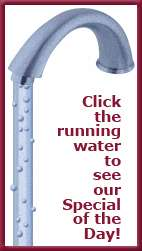 Clawfoot Tub Faucet With Drain, Water Supply Lines & Stops