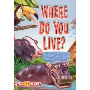 Where Do You Live? (Big Fun! Super Flap Book