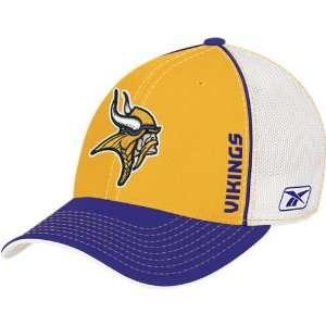 Minnesota Vikings NFL Sideline Flex Fit Hat Sports
