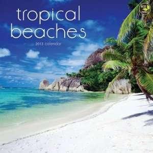 Tropical Beaches 2013 Wall Calendar 12 X 12 Office