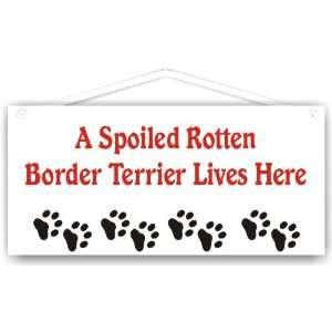 Spoiled Rotten Border Terrier Lives Here
