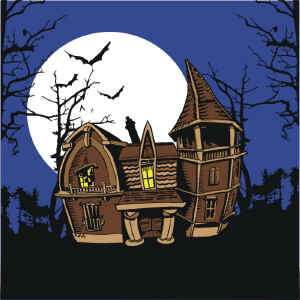 We supply the four silks. The haunted house is about 18 x 18 and the