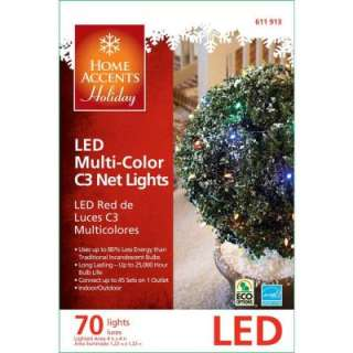 Home Accents Holiday 70 Light LED Multi Color Net Lights (Set of 2