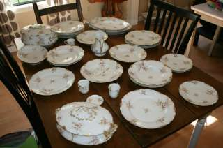 Fine ESTATE Antique Haviland Limoges China Dinnerware Set ~ Lots