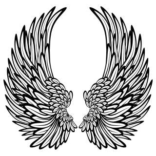 Angel Wings With Feathers Wall Stickers / Wall Decals 5053379001364