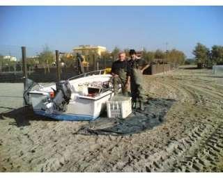 Barca punta licosa con motore 25 hp yamaha completa consolle e cavi co