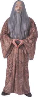 Adult Harry Potter Albus Dumbledore Costume   Authentic Harry Potter