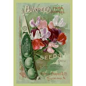 Burpees Farm Annual The Best Seeds That Grow 20x30 Canvas