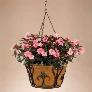 Wrought Iron Finial Hanging Basket Planters with Coco