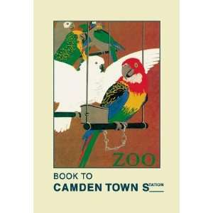 Exclusive By Buyenlarge The London Zoo Exotic Birds 12x18 Giclee on