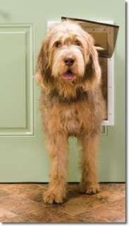 PetSafe Plastic Pet Door   Large PPA00 10960 Dog Door